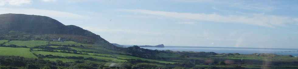worms head view